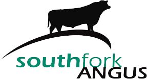 Southfork Angus Melbourne